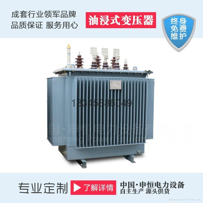 双绕组油浸式变压器 1
