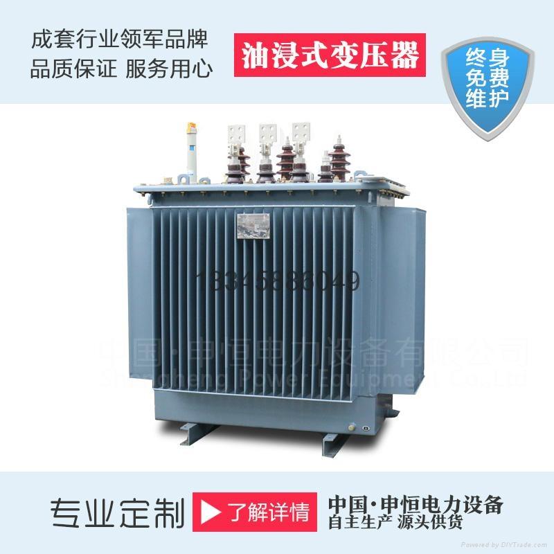 双绕组油浸式变压器 4