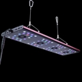 2016 EVERGROW New intelligent auto dimming led aquarium light led reef light cor 1