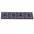 2016 EVERGROW New intelligent auto dimming led aquarium light led reef light cor 4
