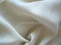silk CDC