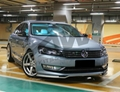 The public before the new passat lips to his chin  4