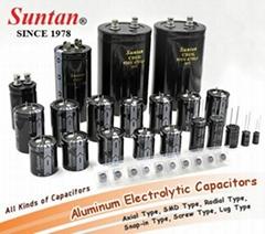 TS13D CD110X Aluminum Electrolytic Capacitors - Radial Type 1uF 10V