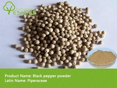 high quality Black pepper powder