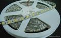 供應5050白光LED軟燈條/60燈1米IP65防水 4