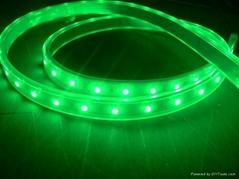 供应LED5050绿光软灯条 60灯灯/米 IP65防水12V