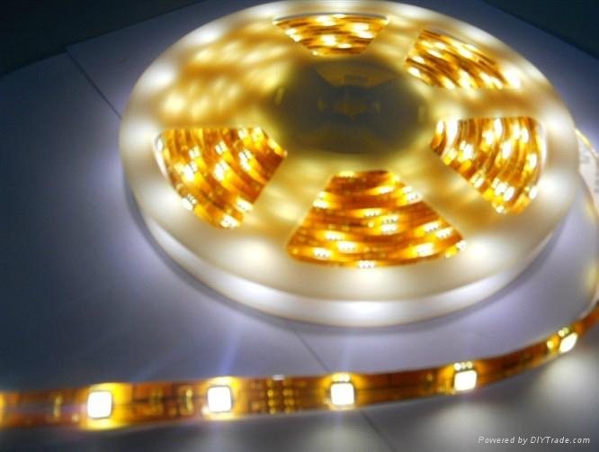 供應LED5050曖白光軟燈條 60燈燈/米 IP65防水12V 1