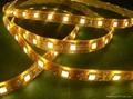 供應LED5050曖白光軟燈條 60燈燈/米 IP65防水12V 4