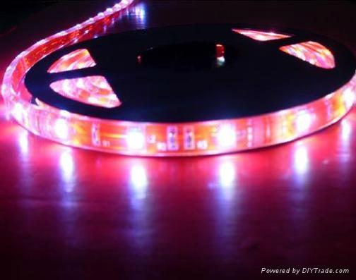 供應LED5050紅光軟燈條 60燈燈/米 IP65防水12V 1