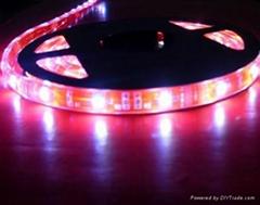 供应LED5050红光软灯条 60灯灯/米 IP65防水12V