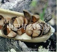 提取于酸楂樹的酸渣樹油