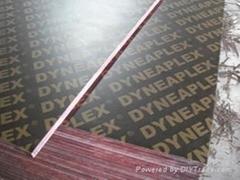 廠家長期供應 15mm 黑色建築使用覆膜膠合板