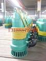 煤矿用BQS防爆排污排沙潜水电泵 5