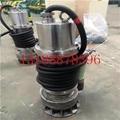 304不锈钢潜水耐腐蚀泵 BQ
