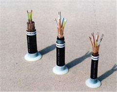 金友ZR-KVV2*4控制電纜