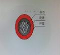 金友JYPV-YJV1*240電力電纜 5