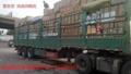 濟南到杭州物流專線 2