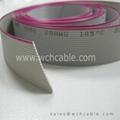 Ribbon Cable UL2651 AWG26 PH1.05