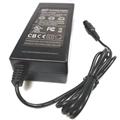 42V2A锂电池电动车充电器 5