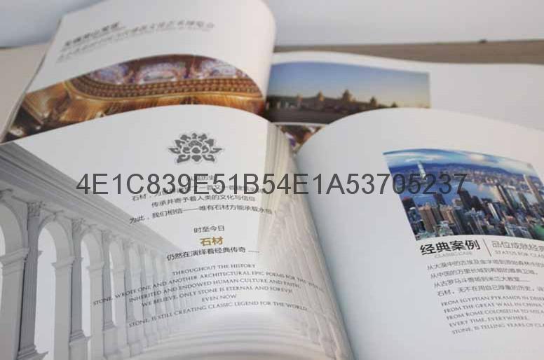 東莞專業畫冊宣傳冊印刷 4