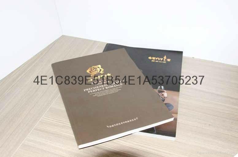 東莞清溪專業畫冊樣板冊印刷 4
