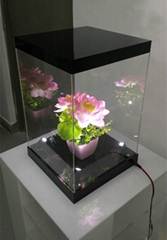 Acrylic Figure Display Box with LED Lights