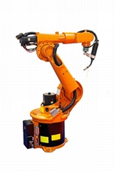 6 axis Multi-joint industrial Robot