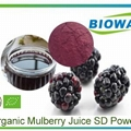 Organic Mulberry Juice Powder