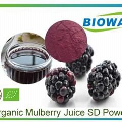 Organic Mulberry Juice Powder