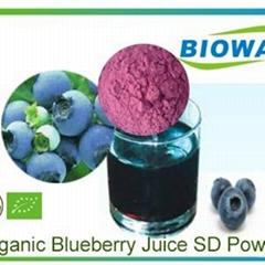 Organic Blueberry Juice Powder