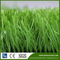 Apple Green Football Grass