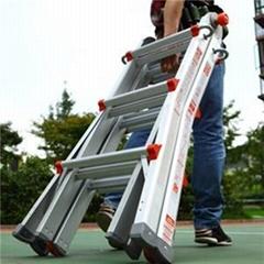 3 In 1 Telescopic Ladder