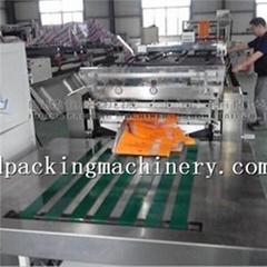 Zipper Seal With Shaped Bag Making Machine