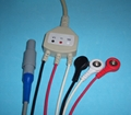 BIOSYS ECG cable with 3 or 5-leadwire