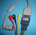 科林BP-306五导电缆与导联