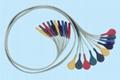 DIN snap style 10 leadwires AHA