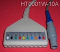 Holter 10LD ECG Cable with Redel-14pin