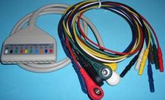 動態心電無頭十導電纜
