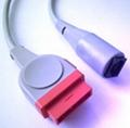 馬葵11pin有創血壓電纜