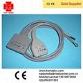HOLTER电缆及导联线
