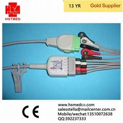馬葵五導電纜;導聯線
