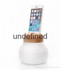 IPHONE charging desk lamp