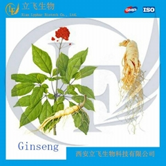Ginseng Extract Powder