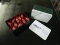 Sealed tea tins 5