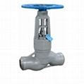 The power station Globe valve