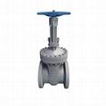 Manual gate valve apply for power