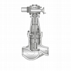 stop check valve apply for power station