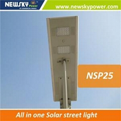 25W Solar Powered Led Outdoor Lights