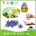 Cold Pressed Refined Borage Seed Oil