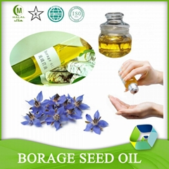 Cold Pressed Refined Borage Seed Oil